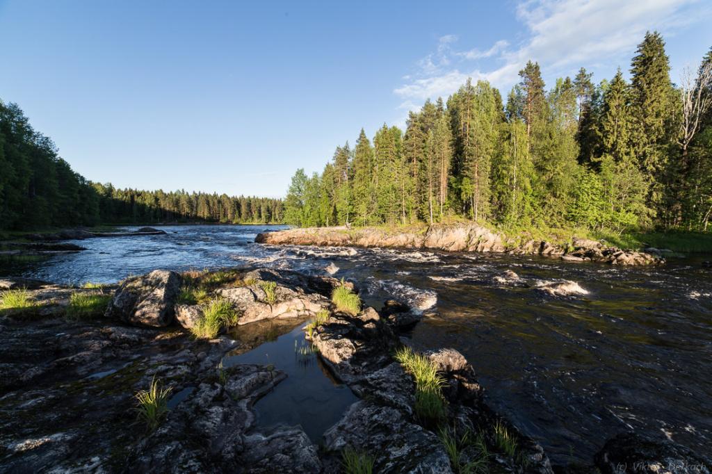 Река Шуя